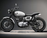 Kawasaki W650 Custom Motosiklet